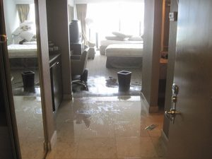 water damage cleanup palm beach